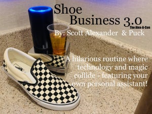 Image of Shoe Business 3.0