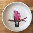 Image 2 of Galah Trinket Dishes
