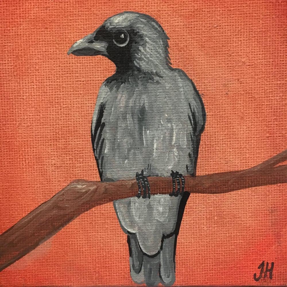 Small Tasmanian Bird Original Paintings