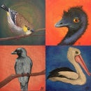 Image 1 of Small Tasmanian Bird Original Paintings
