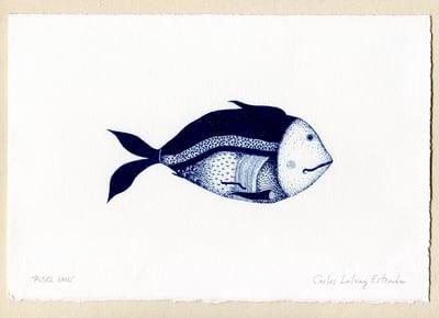 "Image of ""Pesce Amo"""