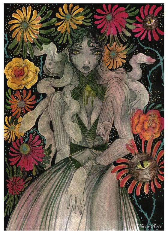 Image of Medusa A4 print