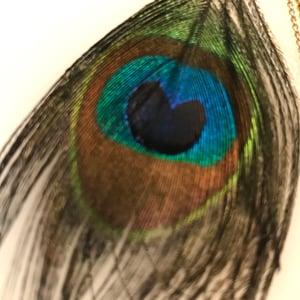 Image of Mono Boucle d'oreille Plume de Paon / Mono Peacock Feather Earring