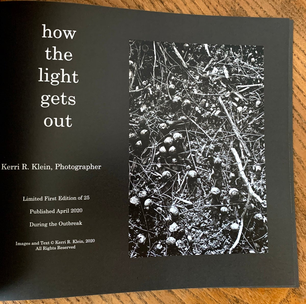 How The Light Gets Out, Soft Cover Photo Book, 10 x 8, 20 Pages