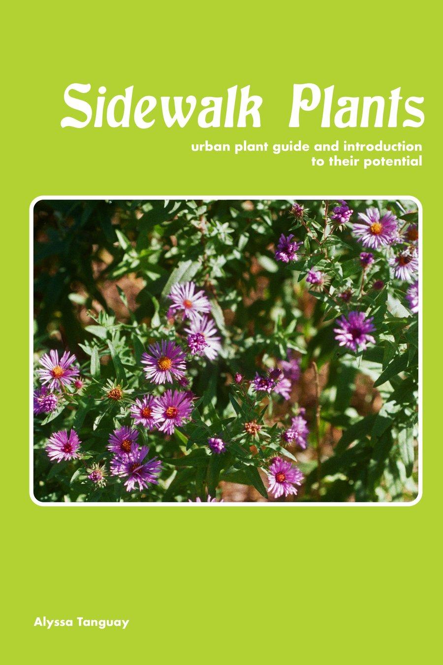 Image of Sidewalk Plants (manufacturing defect)