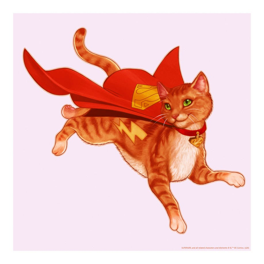 Image of Streaky the Super-Cat