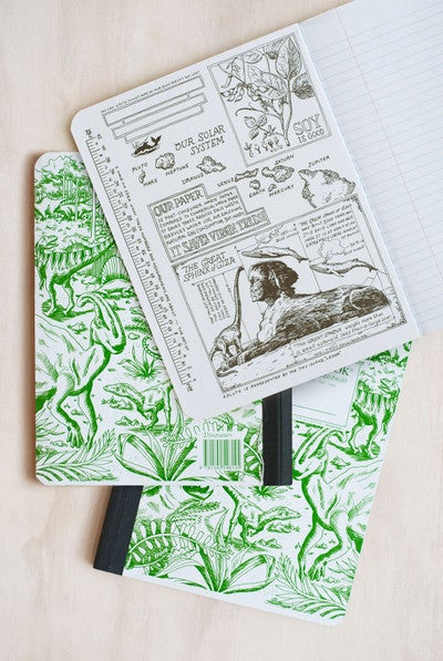 Dinosaurs - Decomposition Brand Notebook