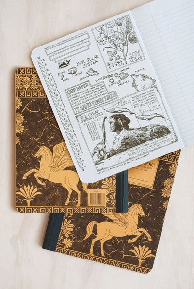 Pegasus - Decomposition Brand Notebook