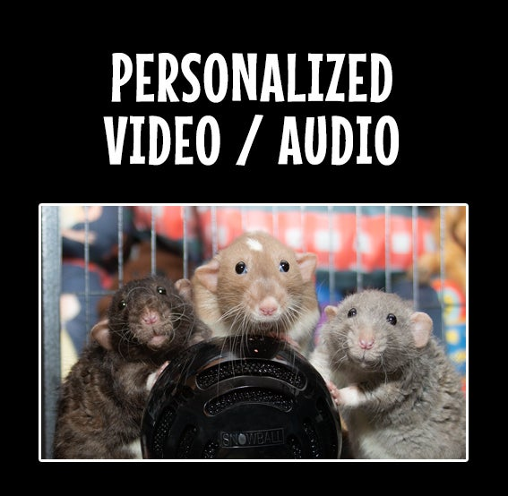 Image of PERSONALIZED Audio or Video