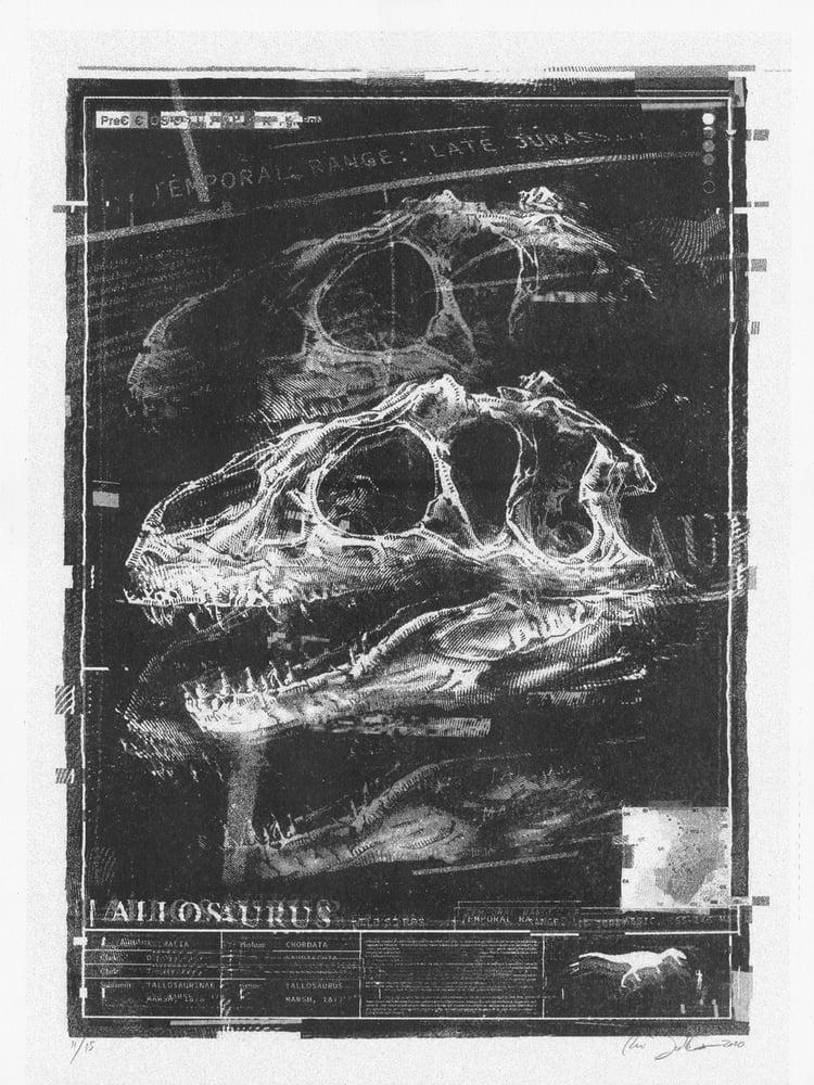 Image of Allosaurus