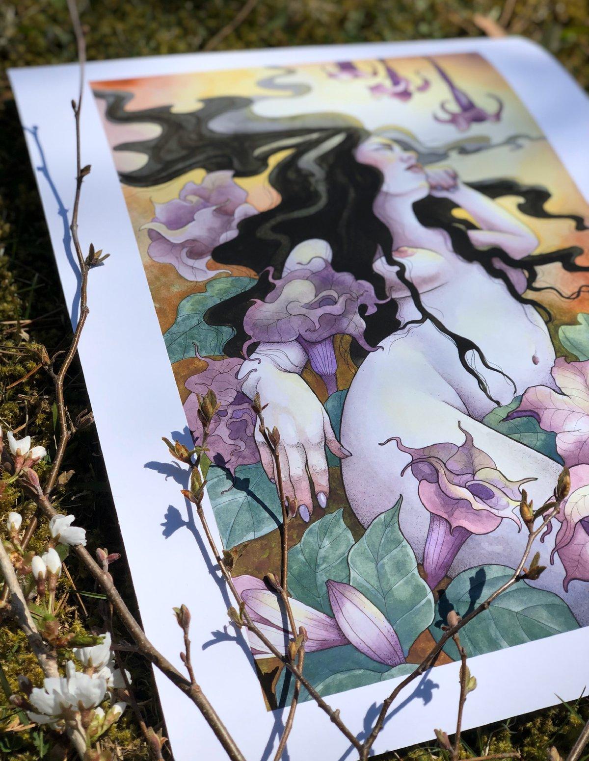 "Datura Witch Print   12 X 16"""