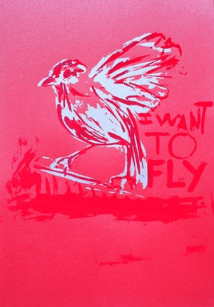 Image of I WANT TO FLY