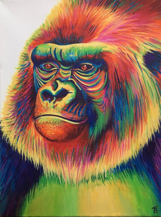 Image of Gary the Rainbow Gorilla