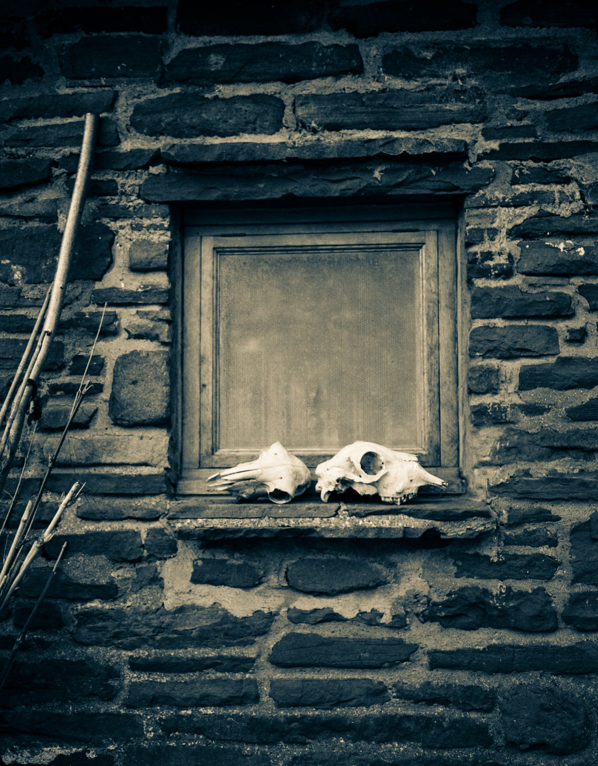 Skulls and window frame