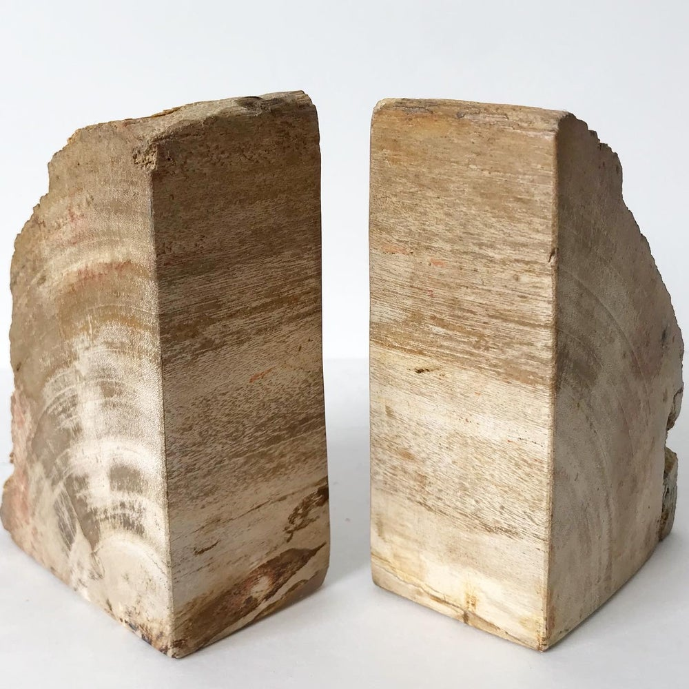 Image of Petrified Wood Bookends No.03