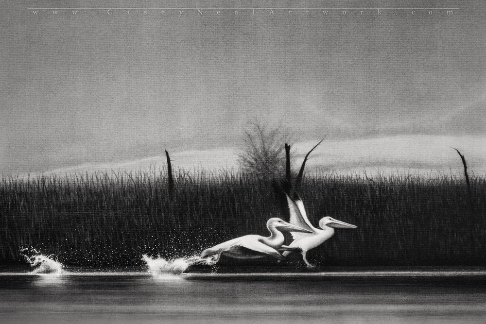 Image of Pelicans - Original Artwork