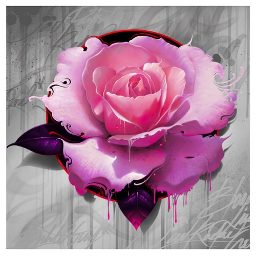 Image of Rose Grey Background