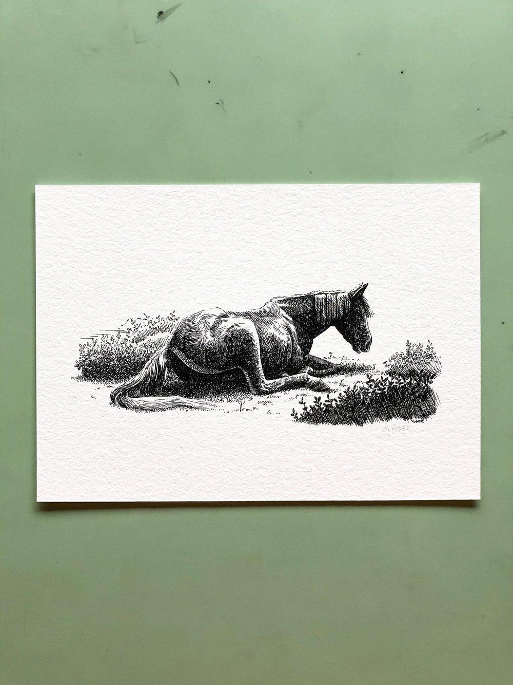 Image of Rest — Signed Fine Art Print