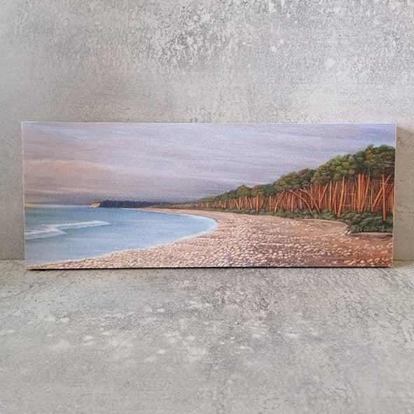 Image of Bruce Bay