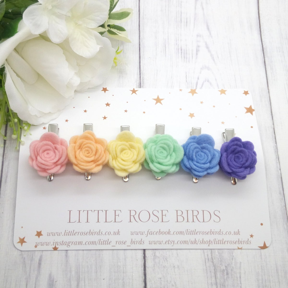 Image of SET OF 6 - Pastel Rainbow Rose Clips