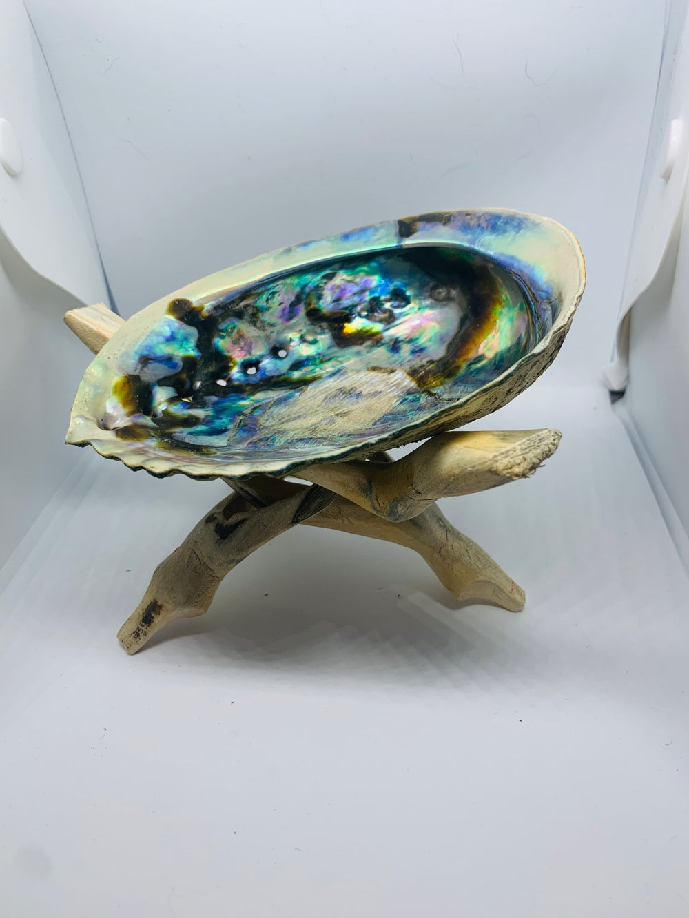 Image of Abalone Shell and Wooden Tripod