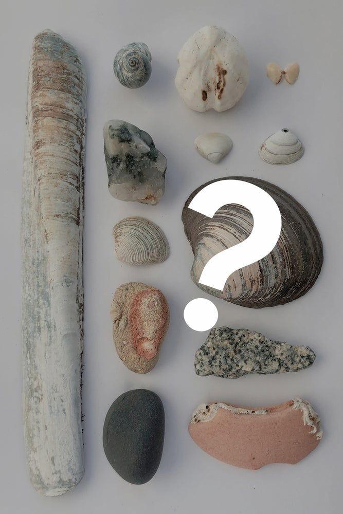Image of The Beach Today - Secret Collection