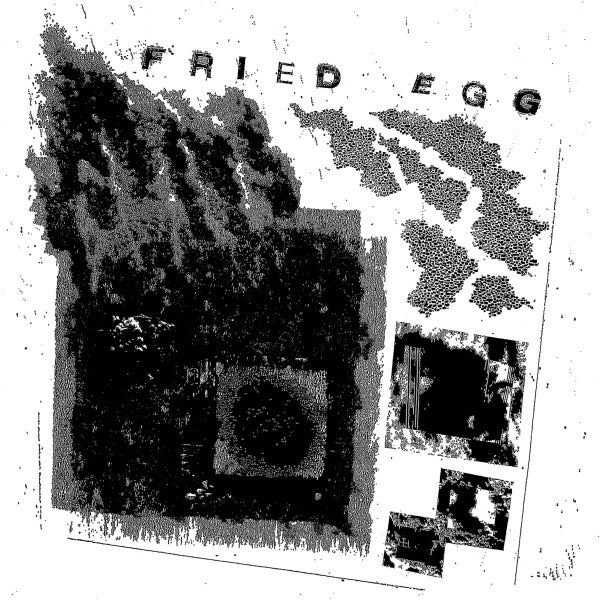 Image of FRIED EGG - Square One LP