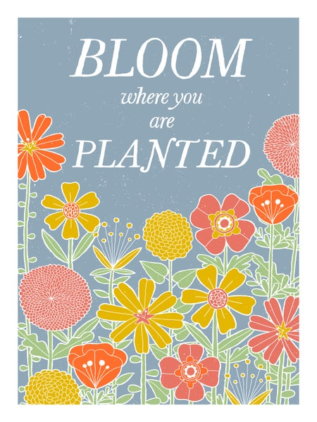Image of Bloom Poster