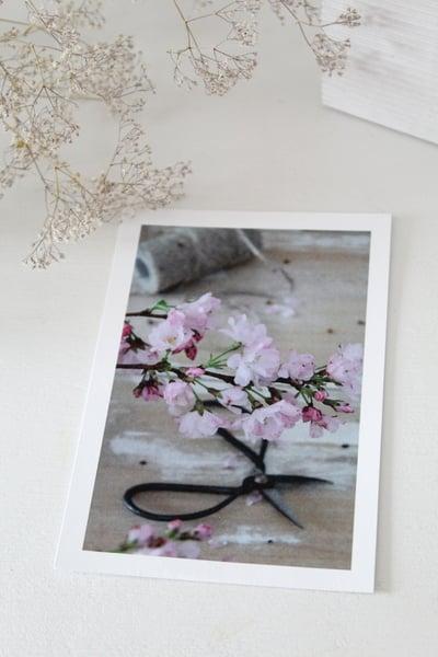 Image of Carte postale 'Branche de cerisier' (CRTPCERISIER)