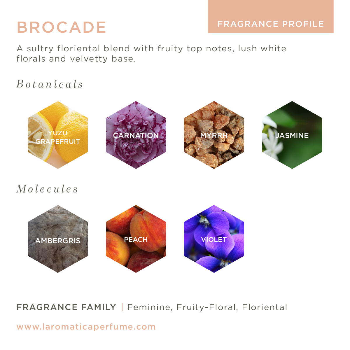 Image of Brocade