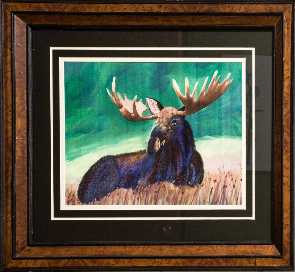 Image of Moose at Rest
