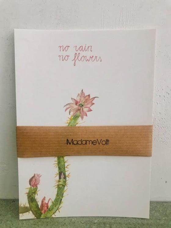Image of postkaart pakket met 3 verschillende prints