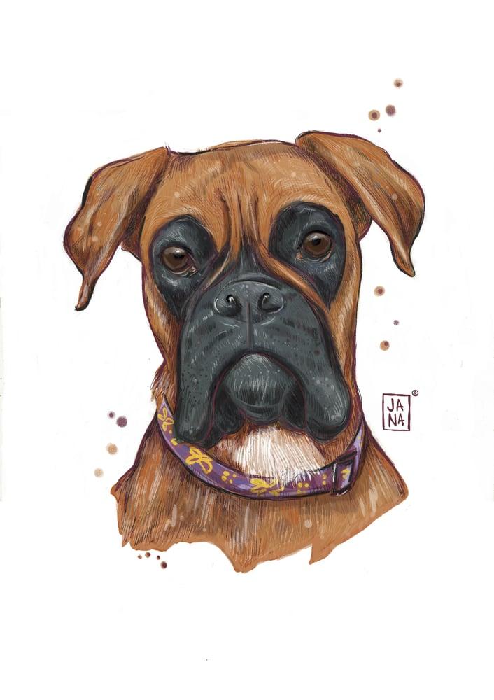 Image of Pet or portrait illustration