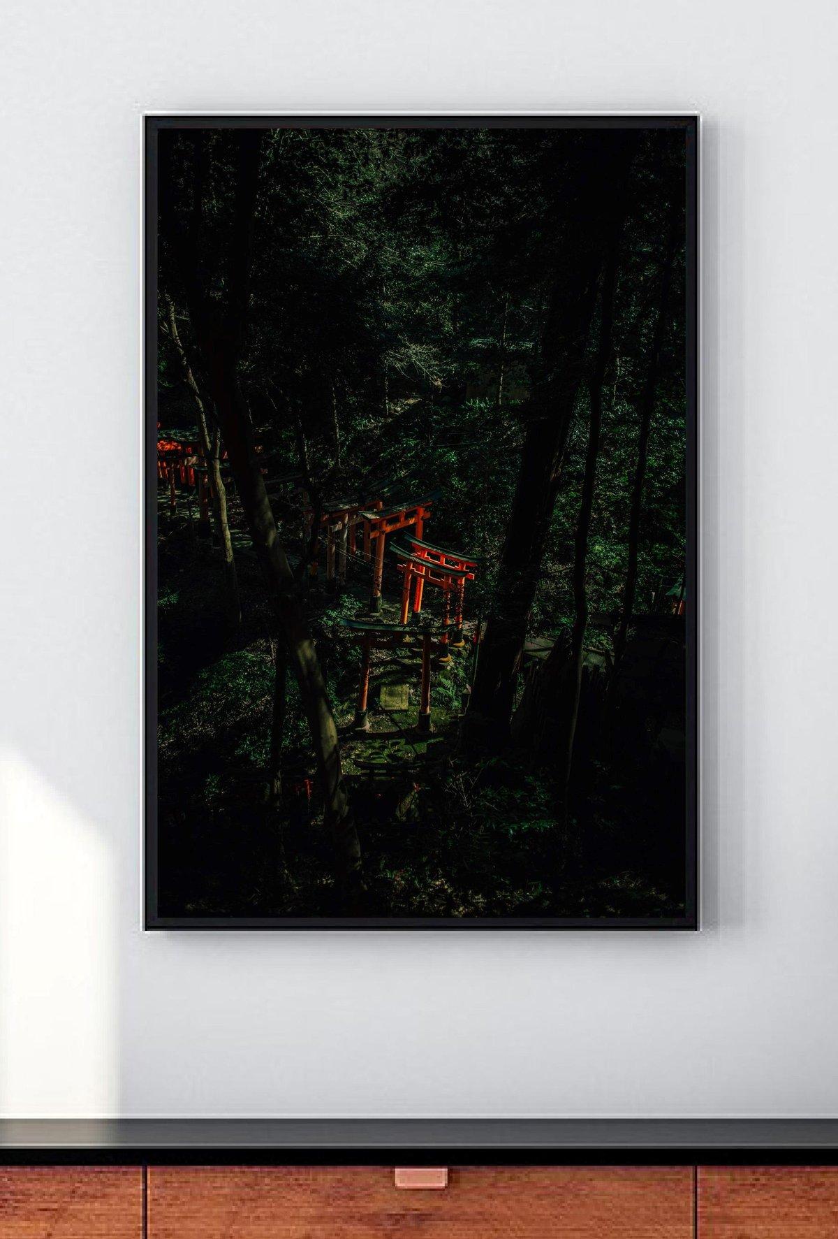 Au fond de la forêt