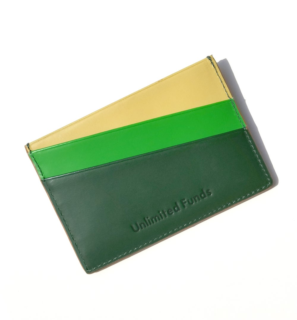 'Unlimited Funds' Multicolor card case - Rainbow Green