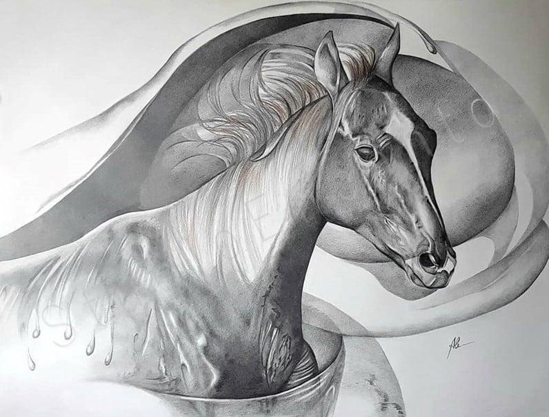 Image of El Polaco by Alejandra Goldberg
