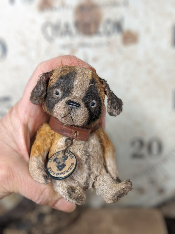 "Image of Teenie-Weenie 4"" old St. Bernard dog in leather collar by whendis bears"