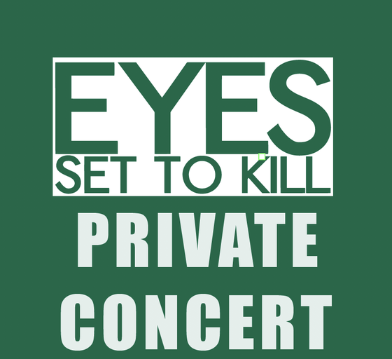 Image of PRIVATE CONCERT with ESTK