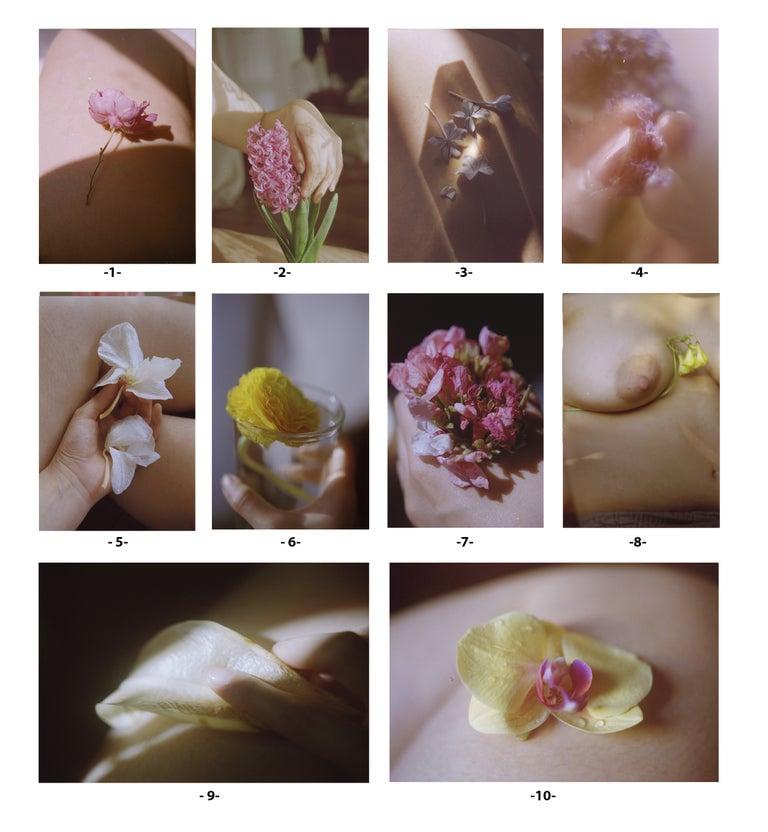 Image of Prints (International shipping)