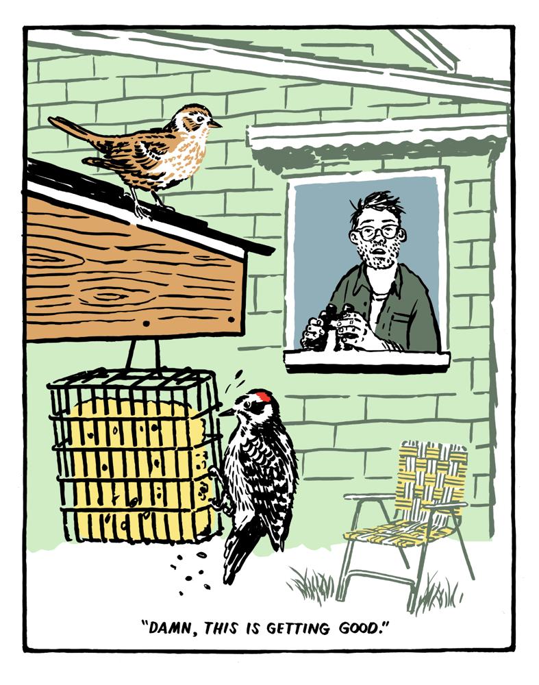 Image of The Quarantine Birder