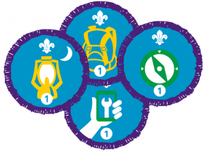 Image of Replacement Badge
