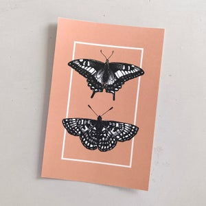 Anise Swallowtail + Checkerspot - 4x6""