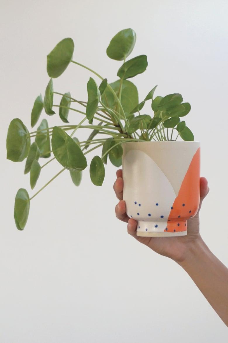 Image of Bloom Planters – (NO DRAINAGE) ceramic
