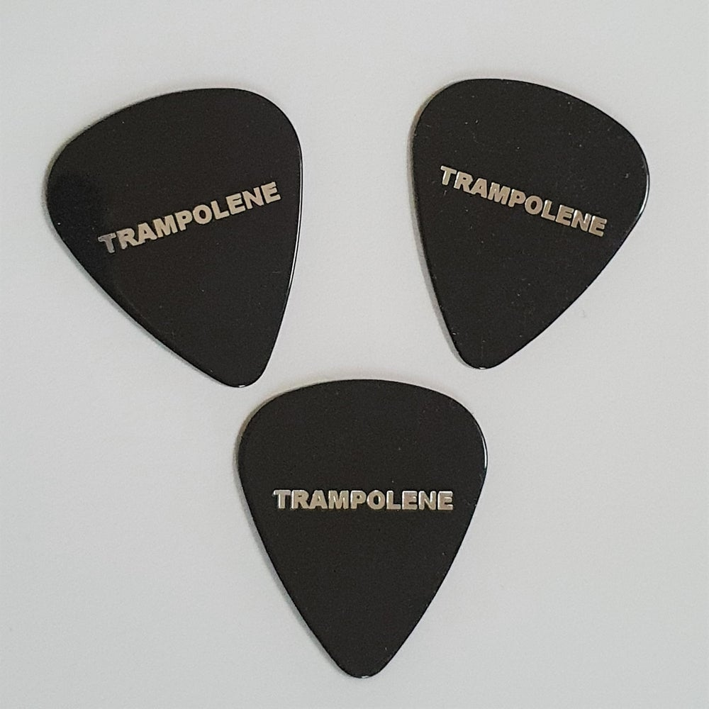 Image of TRAMPOLENE plectrums, set of 3, silver on black