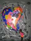 """""""Colours of Love"""" Canvas Prints"""