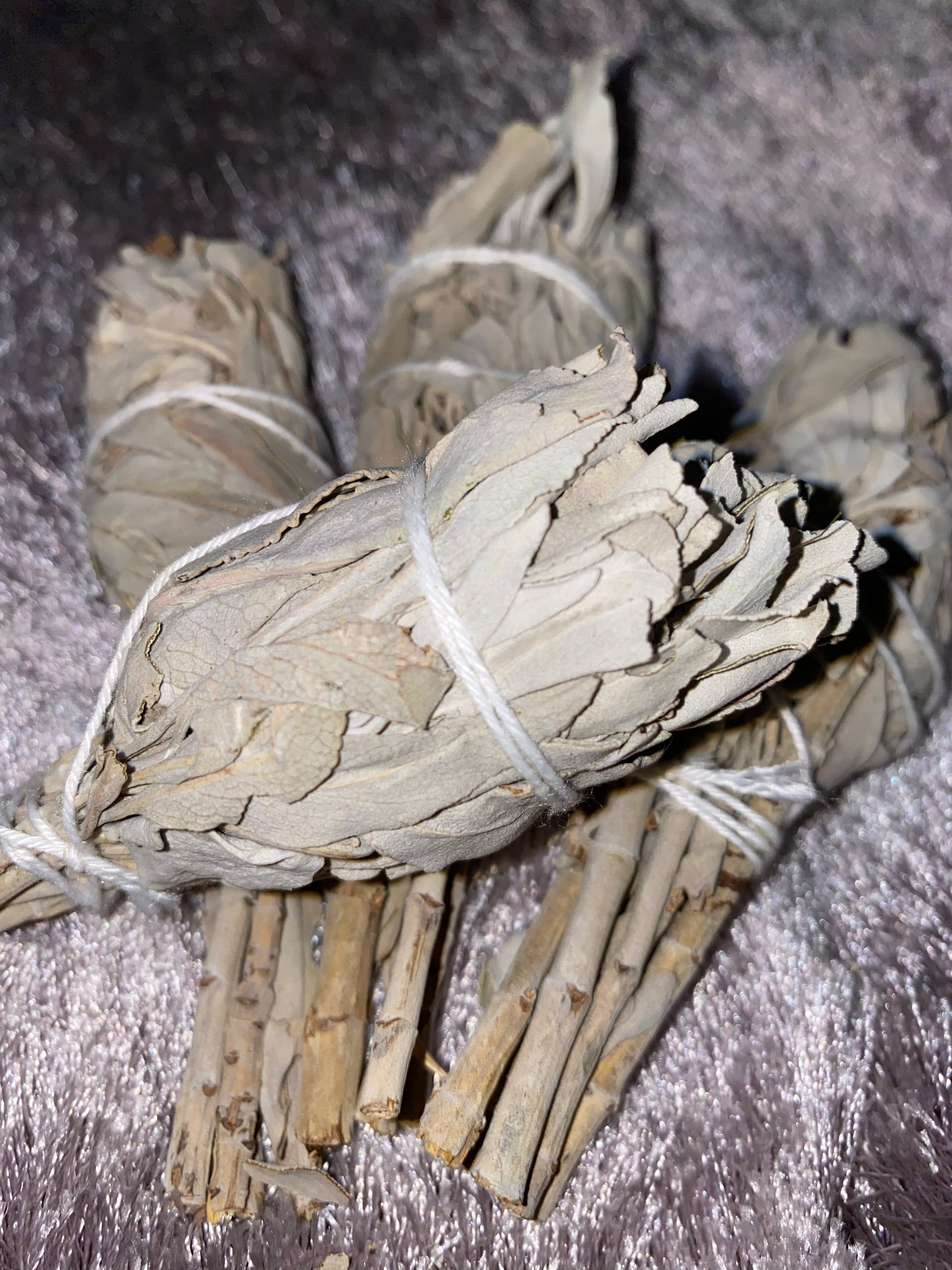 Image of White sage torch