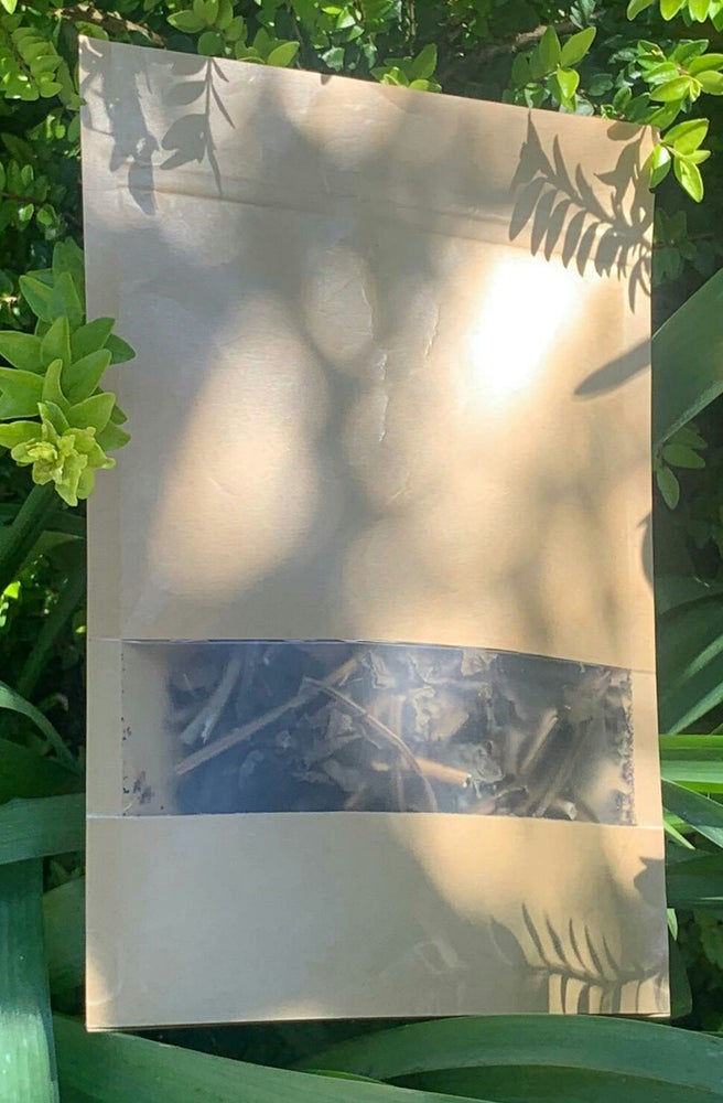 Image of Caribbean Noni Leaves