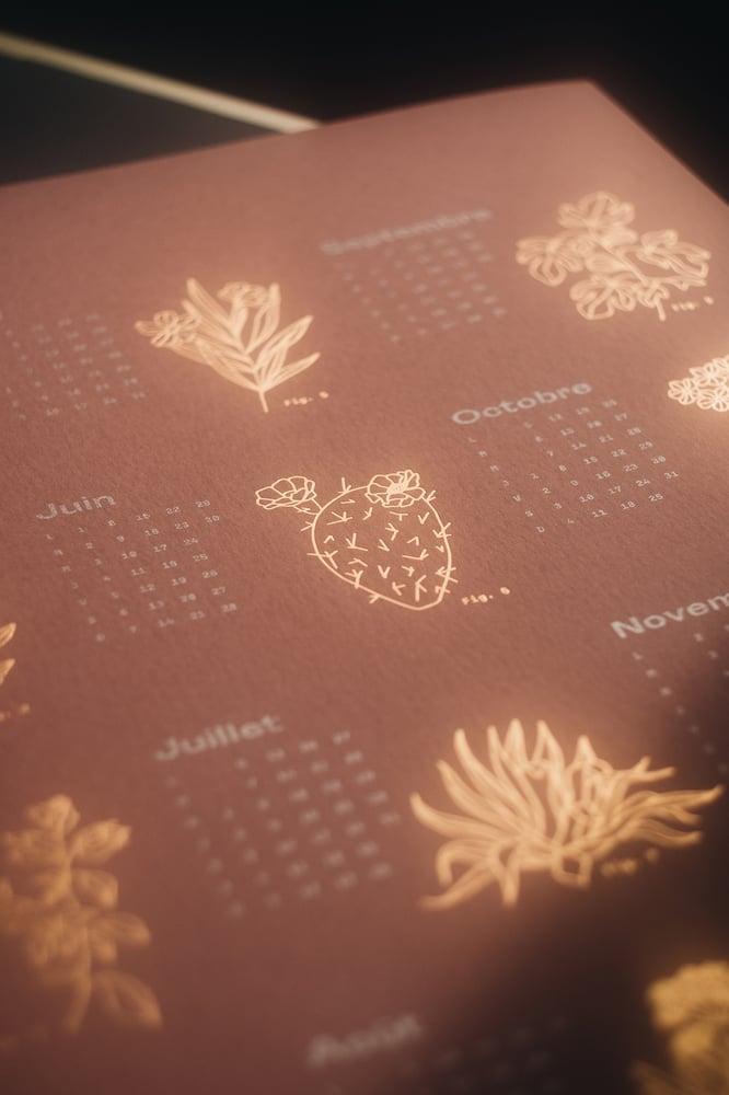 Image of Herbarium Calendars