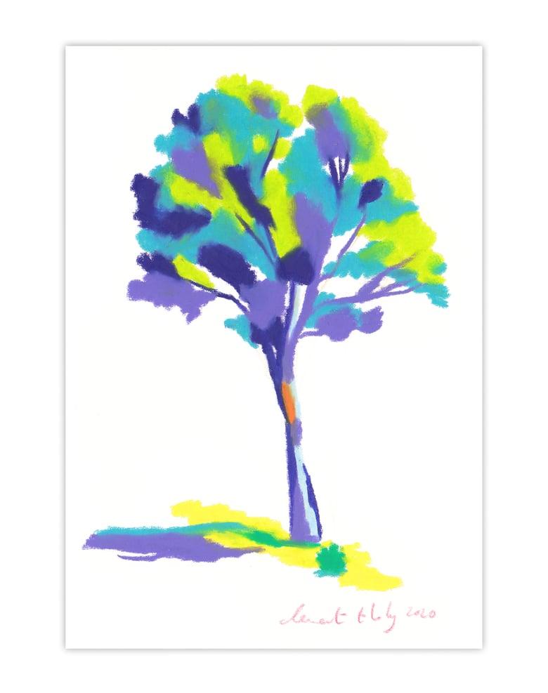 Image of Tree #428