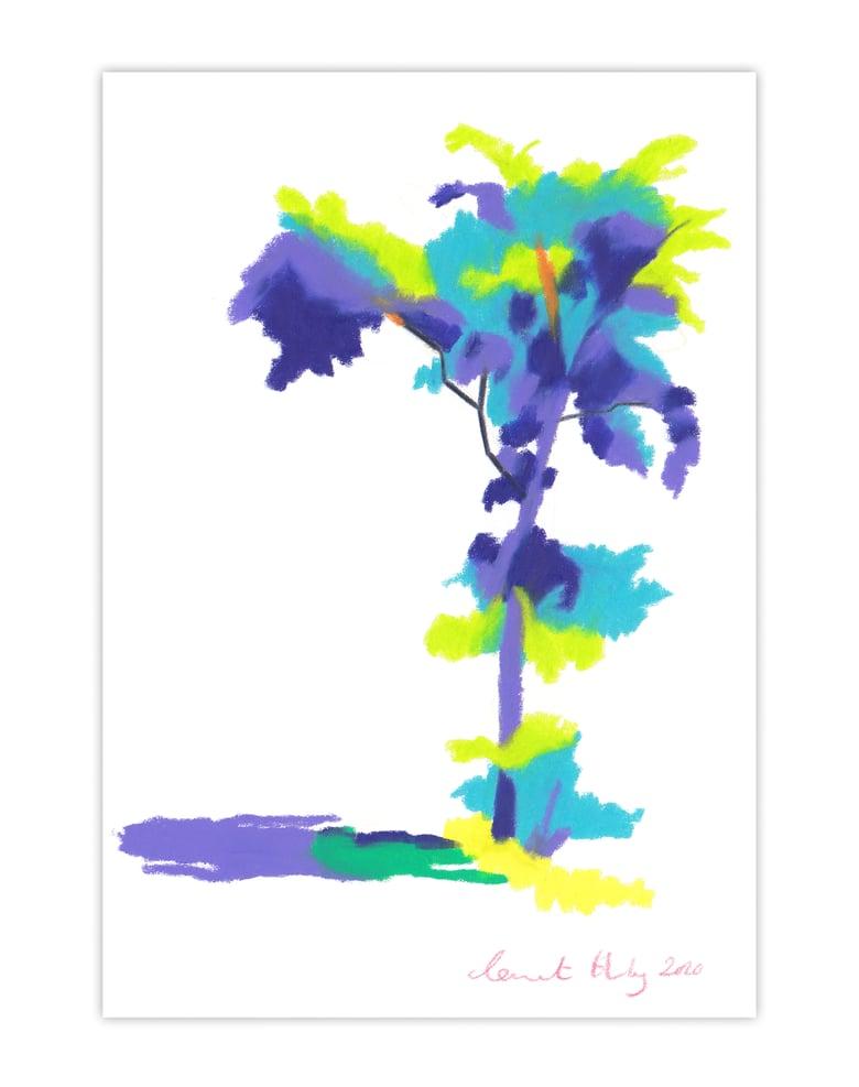 Image of Tree #436